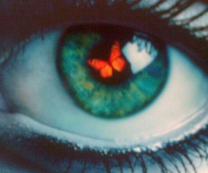 awesome, butterfly, and eye image