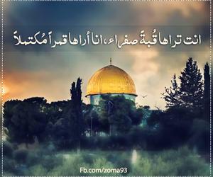 عربي, فلسطين, and قمر image