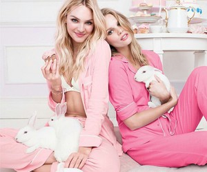 pink, candice swanepoel, and rabbit image