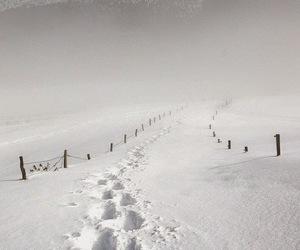 john steinbeck, snow, and sweetness image