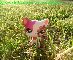 cat, grass, and littlest pet shop image
