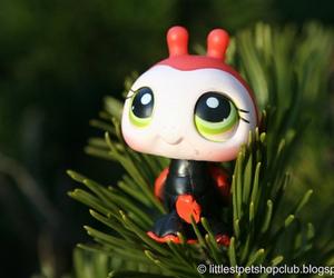 ladybug, littlest pet shop, and lps image