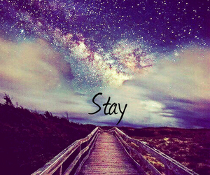 stay image