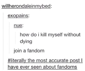 fandom, funny, and tumblr image