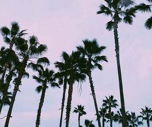 california, sky, and summer image