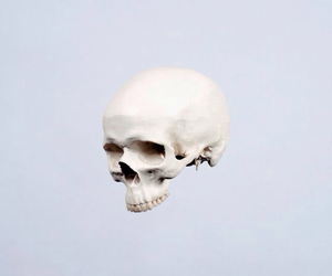 skull, aesthetic, and blue image