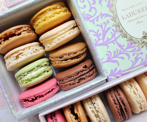 delicious, macaron, and mmm image