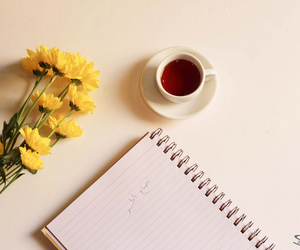 chrysanthemum, flower, and notebook image