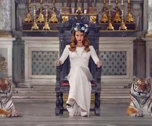 lana del rey, born to die, and tigers image