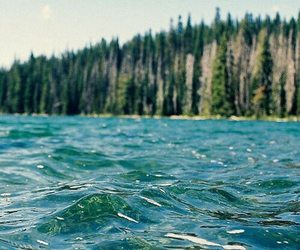 water, nature, and sea image