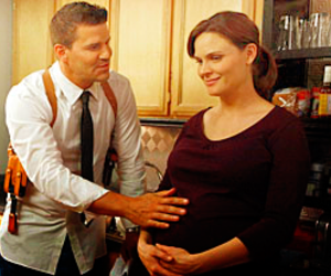 bones, booth, and brennan image