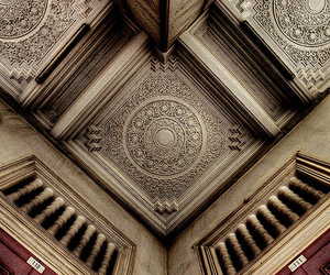 ceiling, perspective, and pigeon image