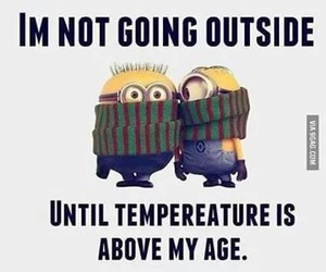 minions, funny, and cold image