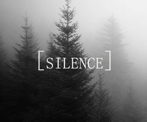 silence, tree, and forest image
