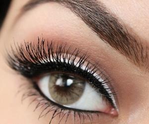 eyebrows, green eyes, and makeup image