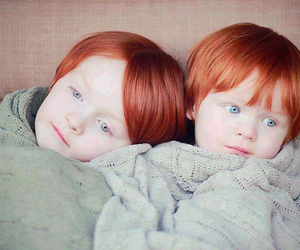 ginger and twins image