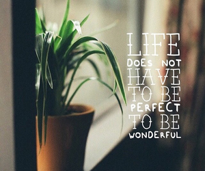 frases and life image
