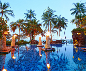 pool, luxury, and palm trees image