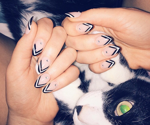 black, kitty, and nail art image