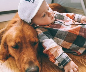 dog, baby, and kids image