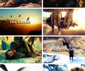 books, the eagles, and the hobbit image
