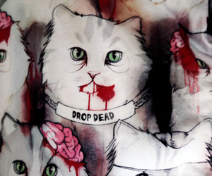 drop dead and cat image