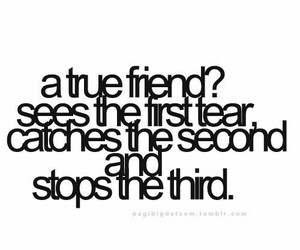 friendship, proverbs, and qoutes image