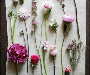 beautiful, tumblr posts, and flowers image