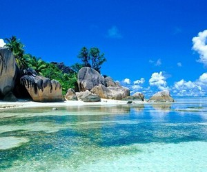 beach, paradise, and training image