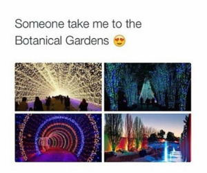beautiful, nature, and botanical gardens image