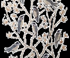 autumn, tree, and birds image