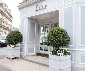 dior, fashion, and girly image
