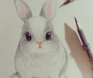 bunny, cool, and drawing image