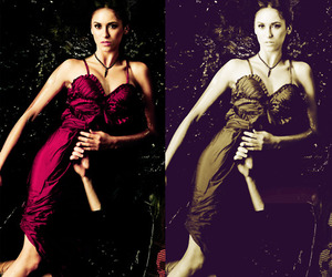 Nina Dobrev and the vampire diaries image