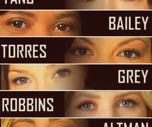 grey's anatomy, grey, and torres image