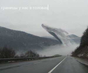 whale and road image