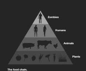 zombies, black and white, and animal image