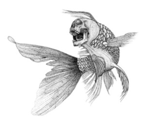awesome, drawing, and fish image