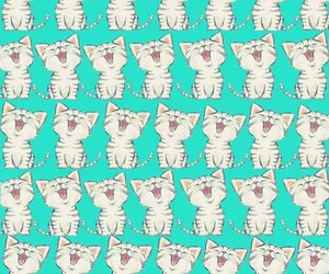 background, cat love, and cat image