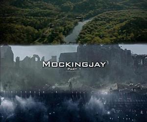 mockingjay and thg image