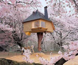 blossom, cool, and treehouse image