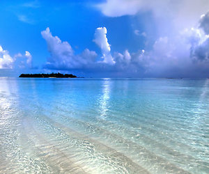 Maldives, beach, and water image