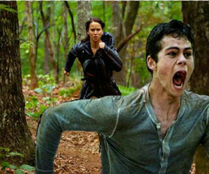 thomas, katniss, and funny moment image