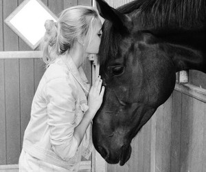 horse, love, and girl image