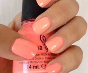 nails and coral image