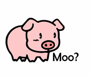 pig, moo, and cute image