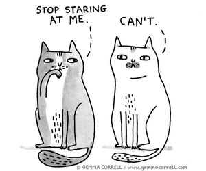 cat, gemma correll, and a cat's life image