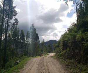 beautiful, hope, and road image