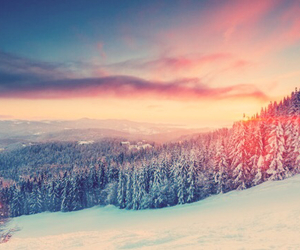 beautiful, forest, and Skiing image