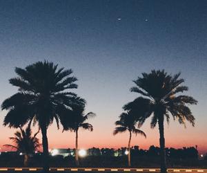 love, Dubai, and nature image